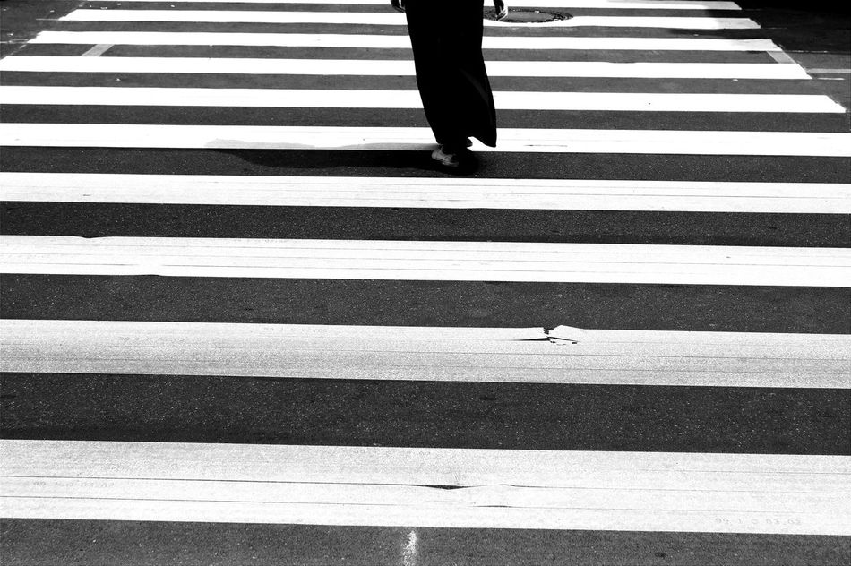 Beautiful stock photos of zebra, Berlin, Crossing, Day, Germany