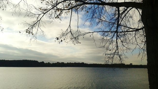 Taking Photos Water View Perfect Weather Perfect Sky Blue Water Cloud - Sky Nice Atmosphere Tree Autumn Leaves