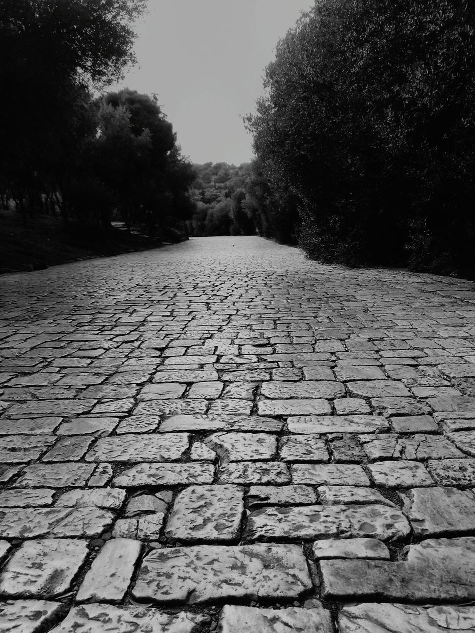 Showcase: DecemberB&w Street Photography : The Path of Acropolis of Athens, Greece as Here Belongs To Me 📍 by Sujoy Mukherjee