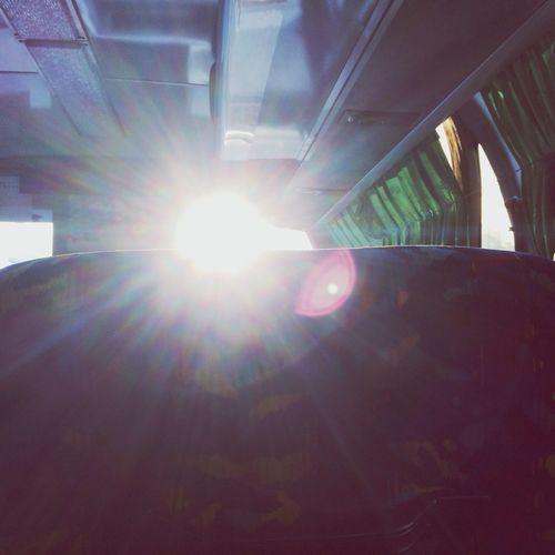 Morning My Life School Bus Sunshine