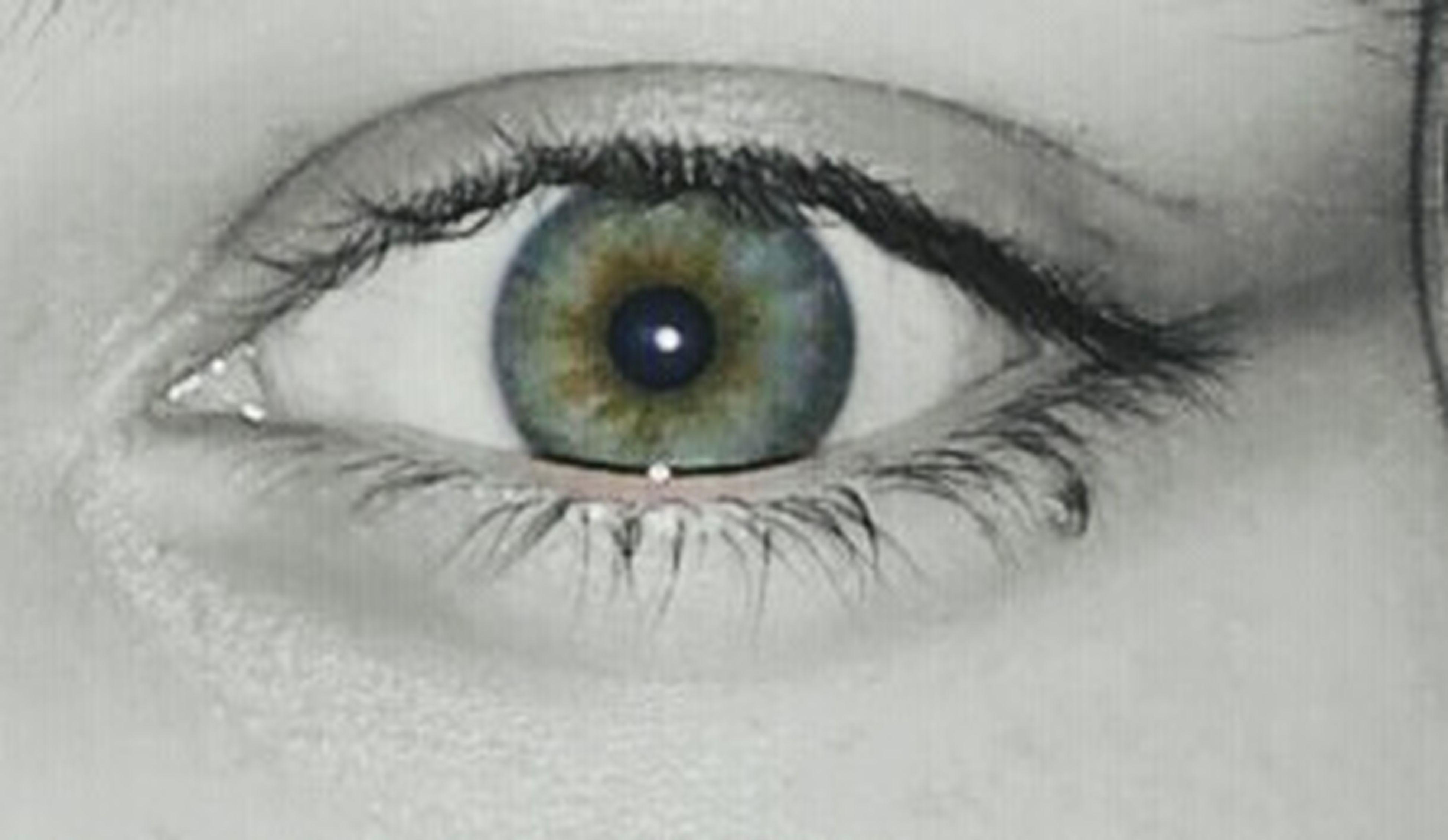 human eye, eyelash, looking at camera, eyesight, sensory perception, extreme close-up, full frame, close-up, backgrounds, staring, portrait, selective focus, eyeball, person, extreme close up, iris - eye, eyebrow, human skin, vision, iris