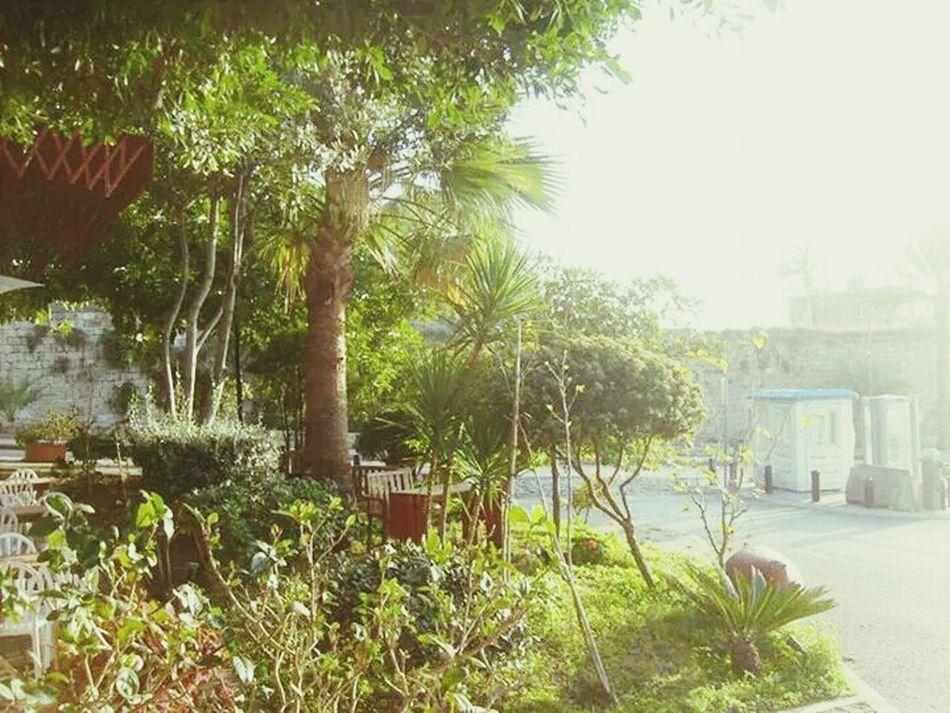 amazing day Lebanon Jbeil Sunny Day