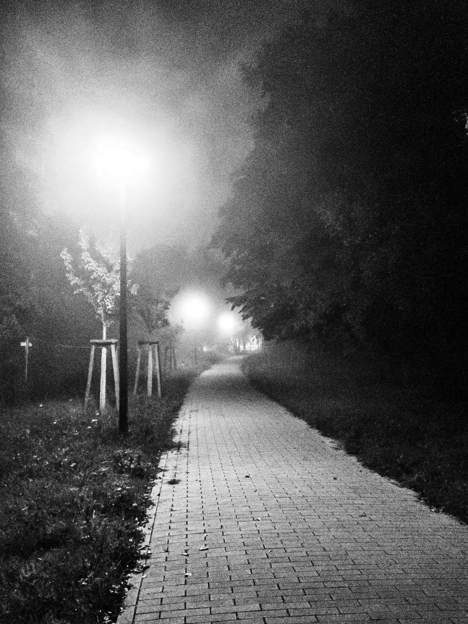 night, the way forward, illuminated, street light, tree, outdoors, no people, walkway, grass, nature