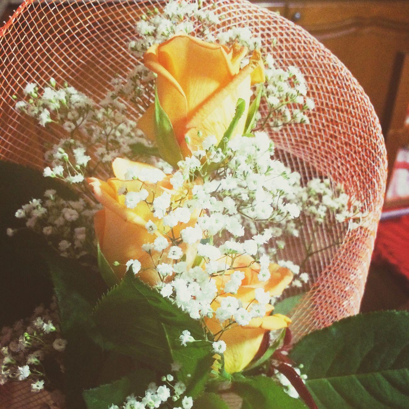 Rose♥ Regalo Grazieditutto