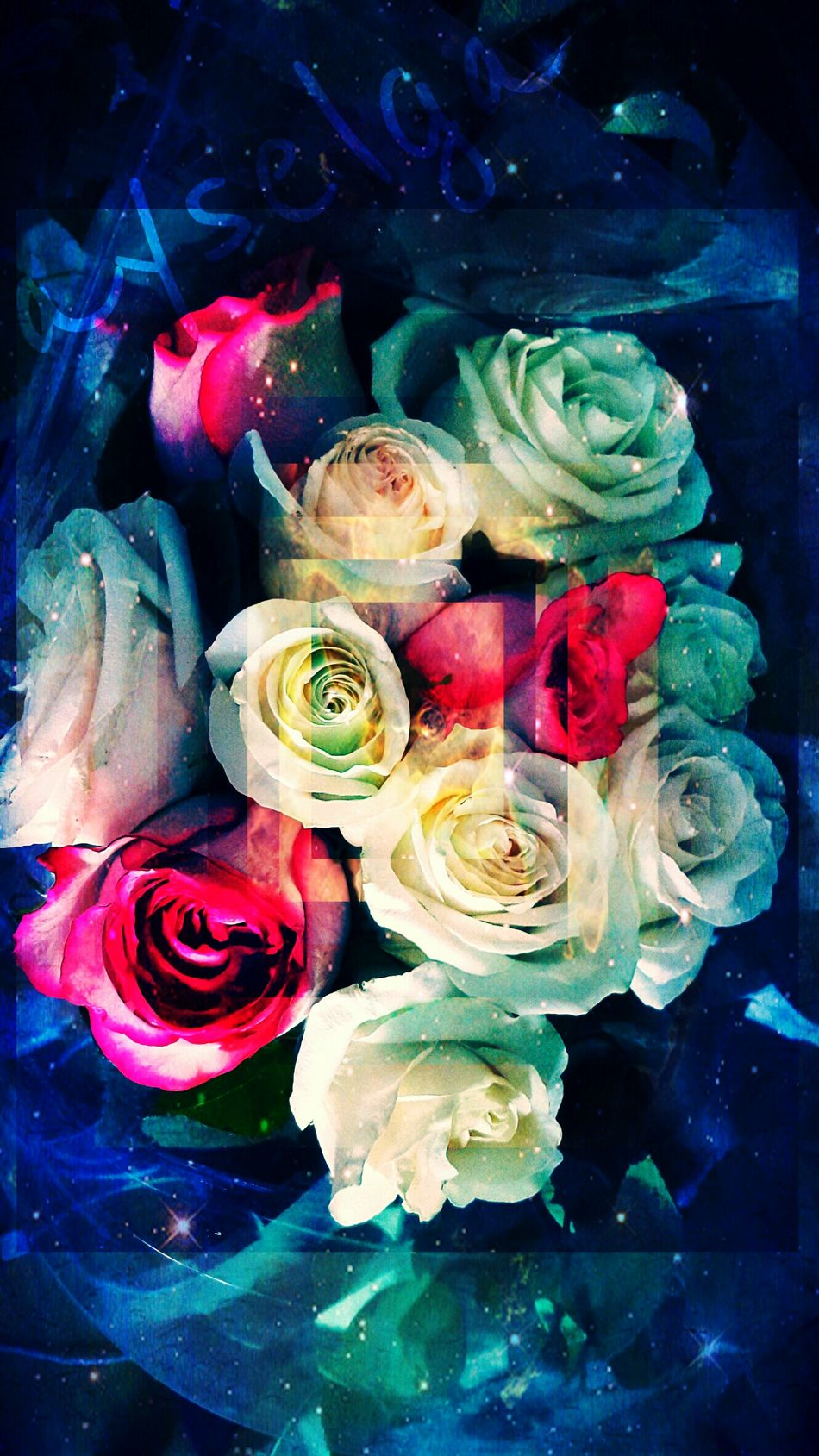 Flowers White Roses🌹🌹🌹 Romantic Beautiful Composition