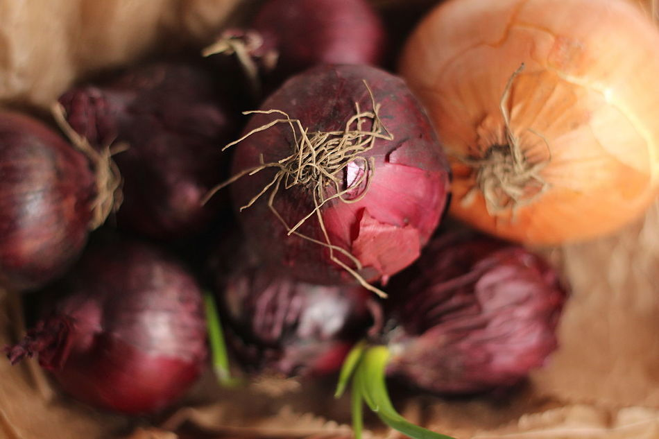 Cipolla  Close-up Food Food And Drink Freshness Healthy Eating Onion Onions Red Onion Rough Vegetable