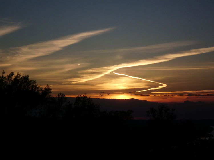 Airplane Airplane Wing Beauty In Nature Cloud - Sky Day Flying In Awe Nature No People Outdoors Scenics Silhouette Sky Sunset Tranquil Scene Tranquility Tree Vapor Trail