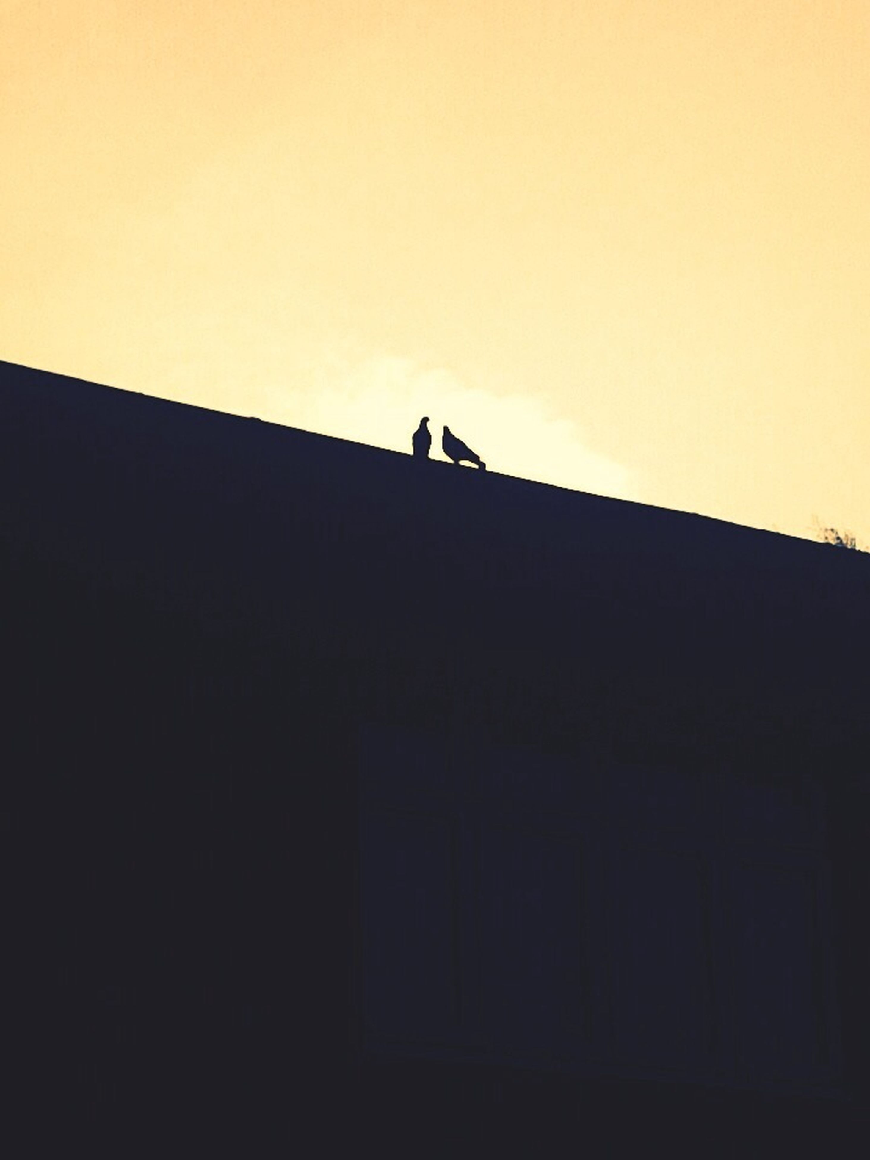 silhouette, architecture, built structure, building exterior, low angle view, copy space, sky, clear sky, building, sunset, men, outline, outdoors, unrecognizable person, dusk, dark, high section, wall - building feature