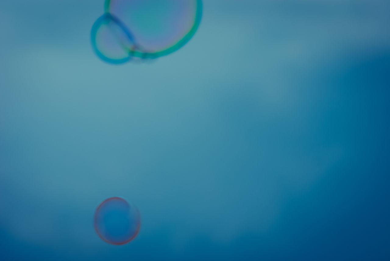 nature, beauty in nature, no people, fragility, close-up, day, outdoors, bubble wand