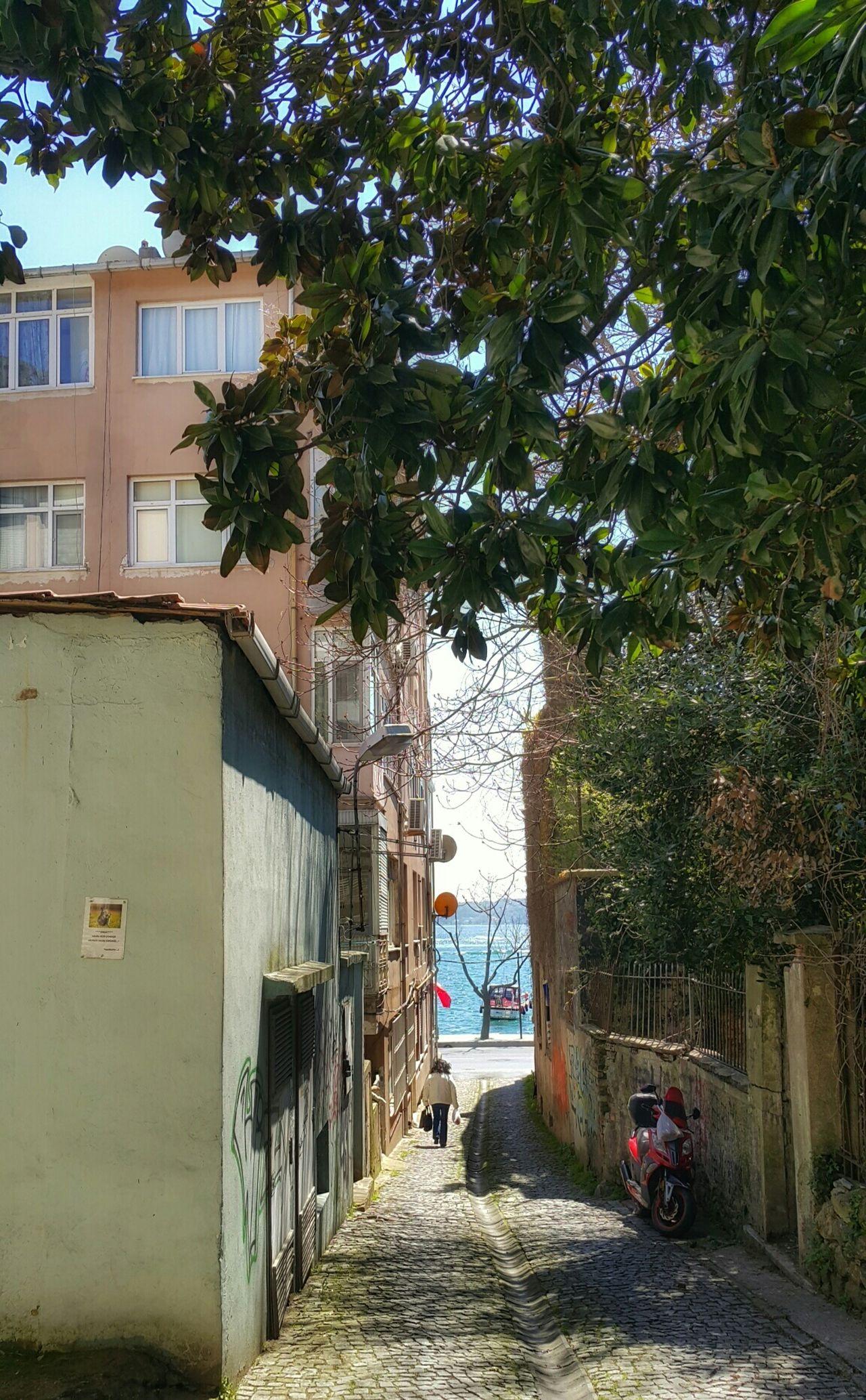 Sarıyer Istanbul City Streetphotography Street Taking Photos Relaxing Eye4photography  Landscape