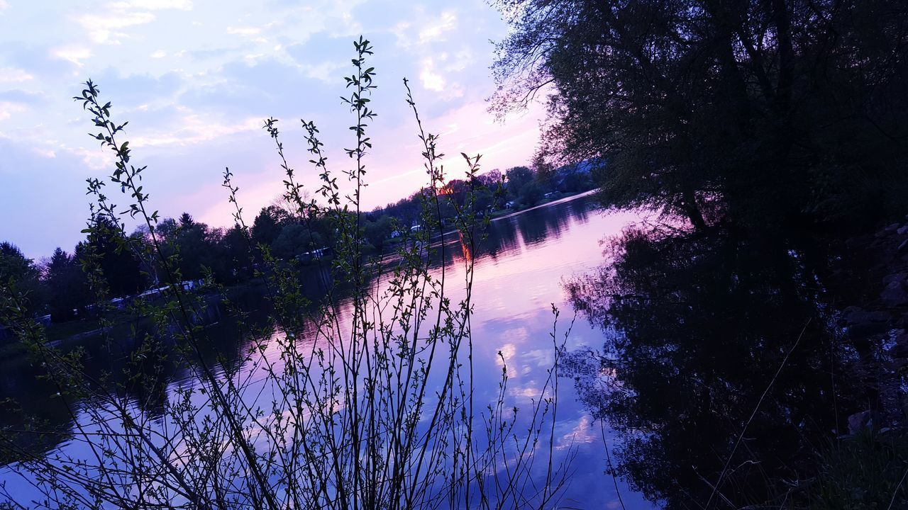 Main Nature Water Sky Beauty In Nature Freshness Sunset Tree Silhouette Growth No People Outdoors Scenics Close-up Day