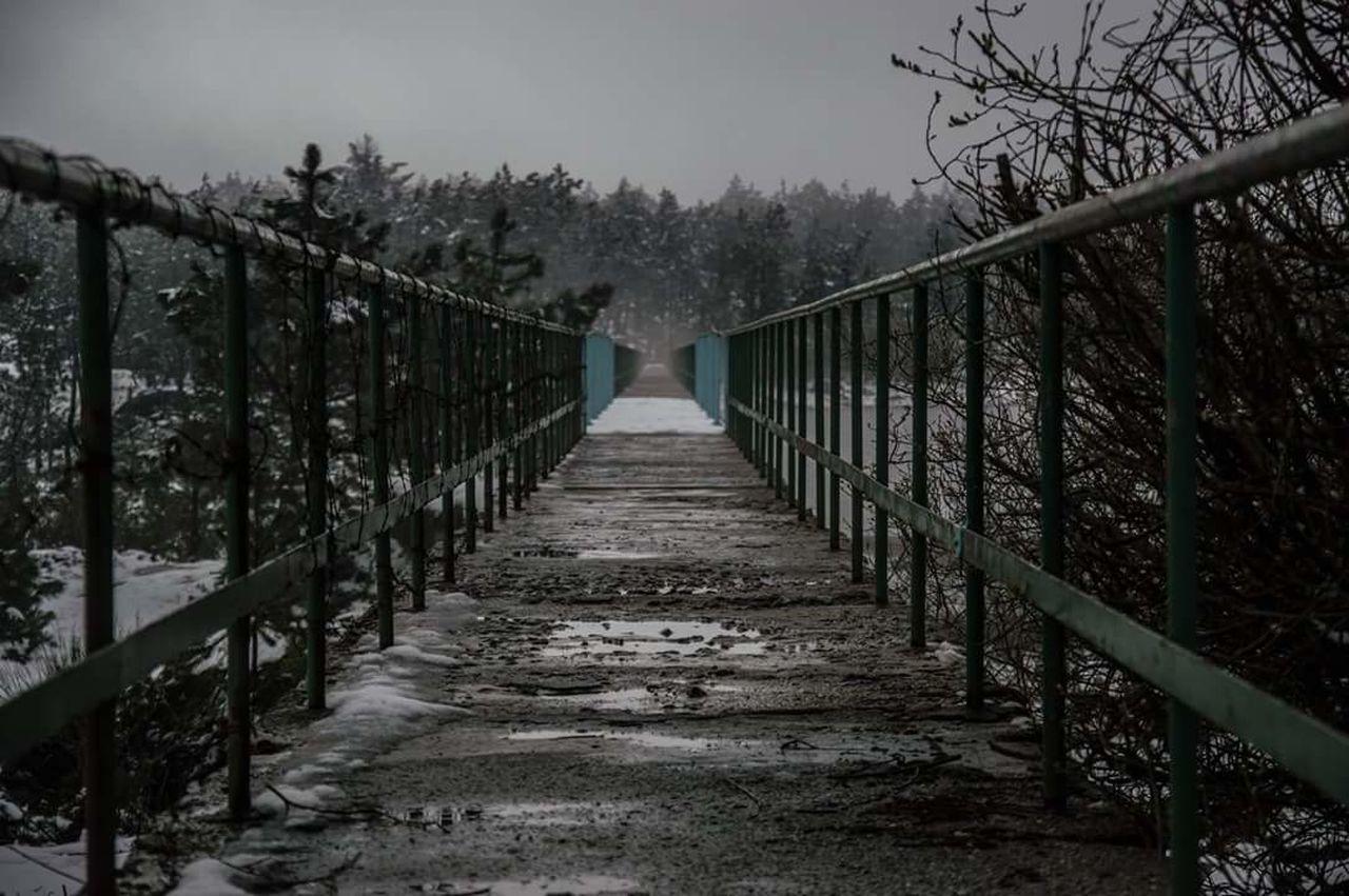 Snow Winter Nature Bridge Photography Fonseca94 Day No People Sky First Eyeem Photo