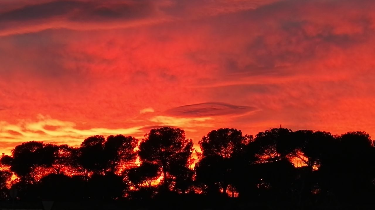 Amazing sunset Sunset Sunset_collection Silhouette Silhouettes Silhouette_collection Red Sky Clouds And Sky Clouds Cloudscape Trees Nature Tree And Sky Trees And Sky Silouette & Sky Silhouettes Of Trees