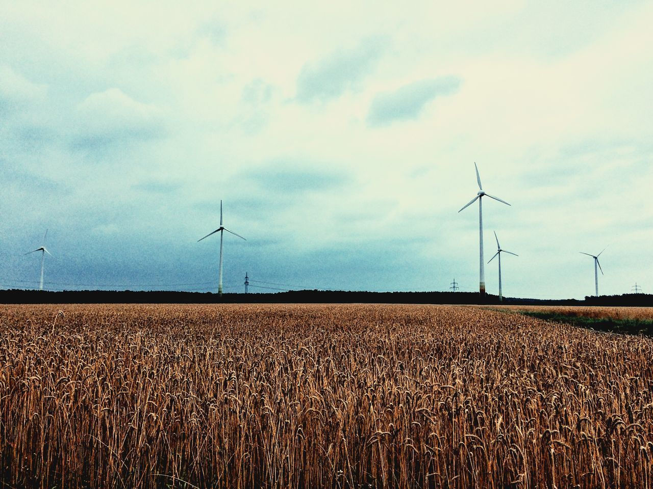 wind turbine, wind power, environmental conservation, alternative energy, fuel and power generation, field, renewable energy, windmill, rural scene, sky, day, agriculture, industrial windmill, no people, outdoors, nature, landscape, tranquility, technology, beauty in nature