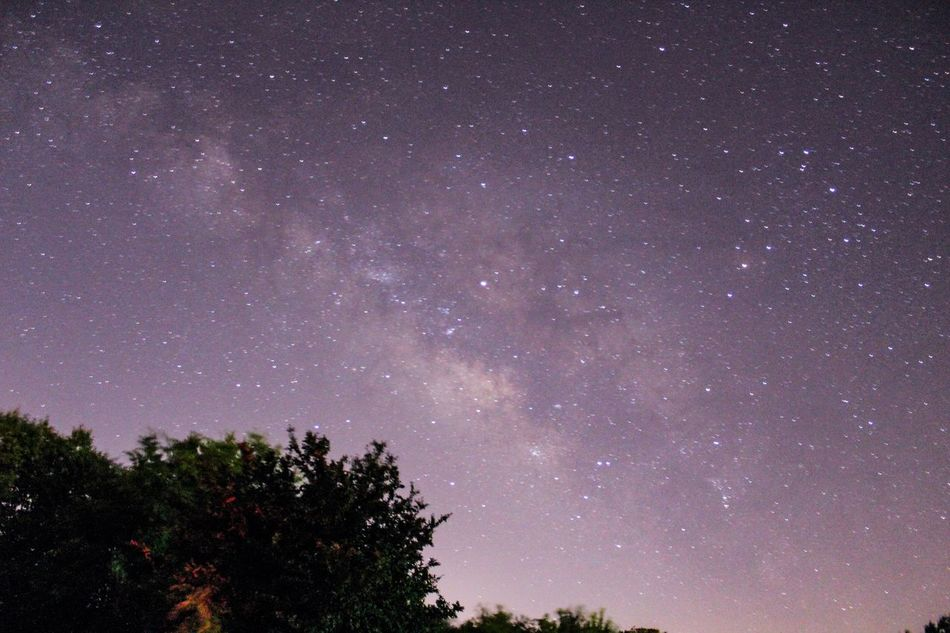 Milky Way Starry Star - Space Night Astronomy Low Angle View Galaxy Beauty In Nature Tree Sky Tranquility Tranquil Scene Silhouette Nature No People Scenics Outdoors Space Constellation just a clear night and a little practicing and I get this ❤️ super stoked