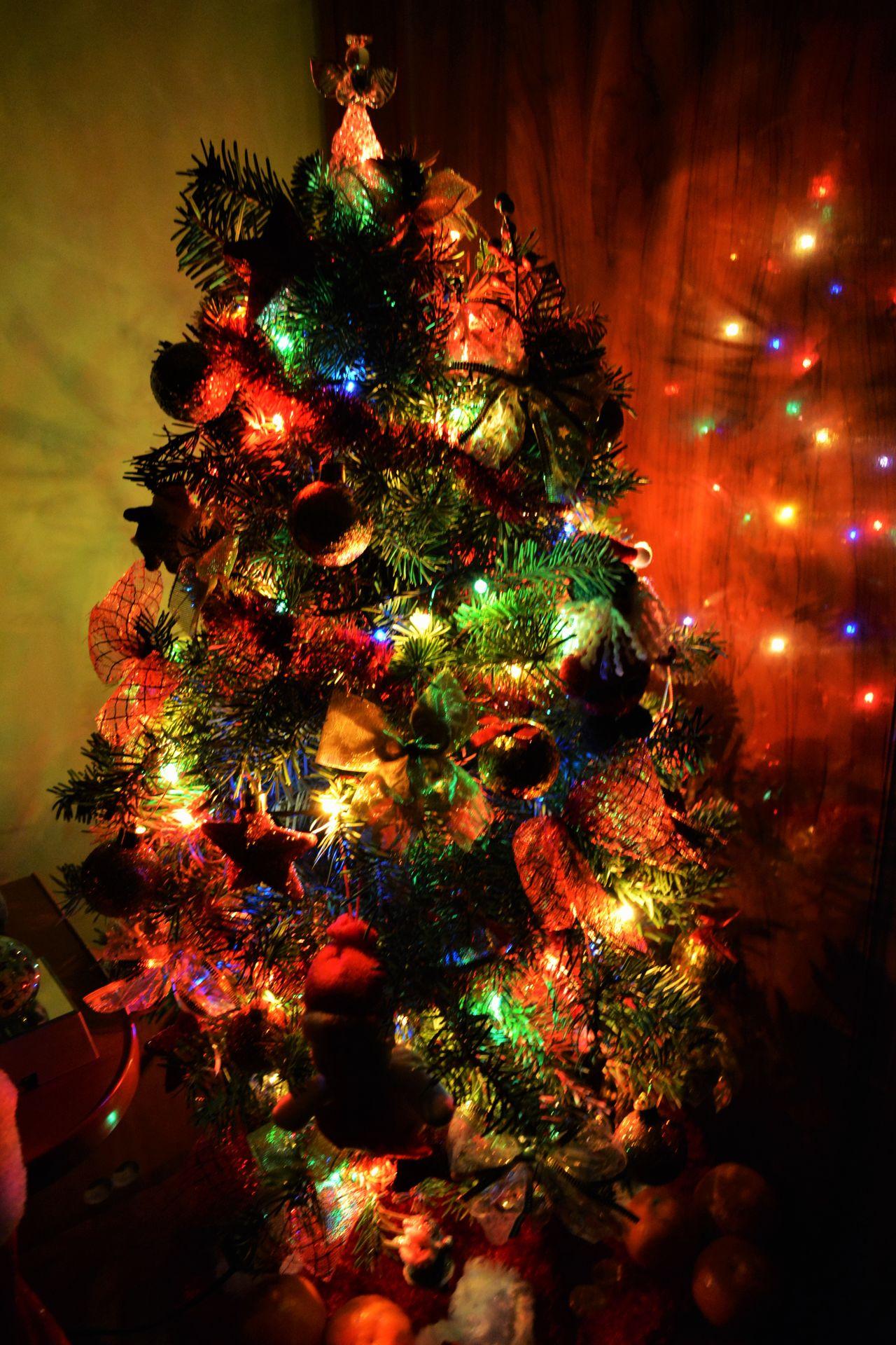 Celebration Celebration Event Christmas Christmas Decoration Christmas Lights Christmas Ornament Christmas Tree Close-up Cultures Decoration Holiday - Event Illuminated Indoors  Night No People Tradition Tree Vacations