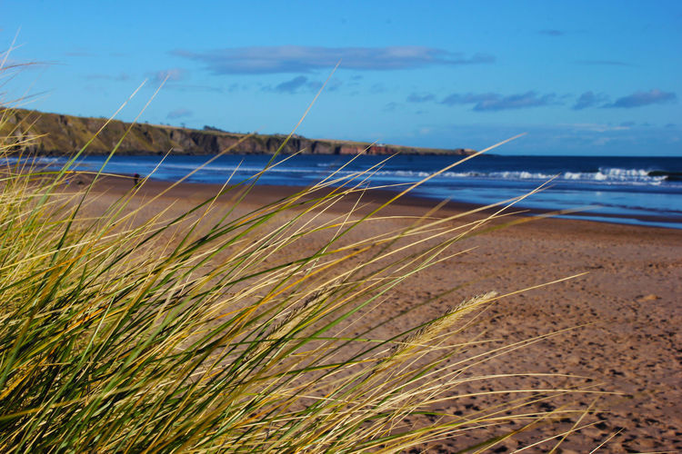 Scotland Beach Beauty In Nature Day Nature No People Outdoors Sea Sky Water