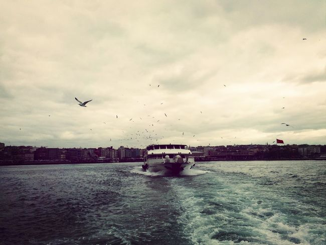 Popular Photos Istanbullovers