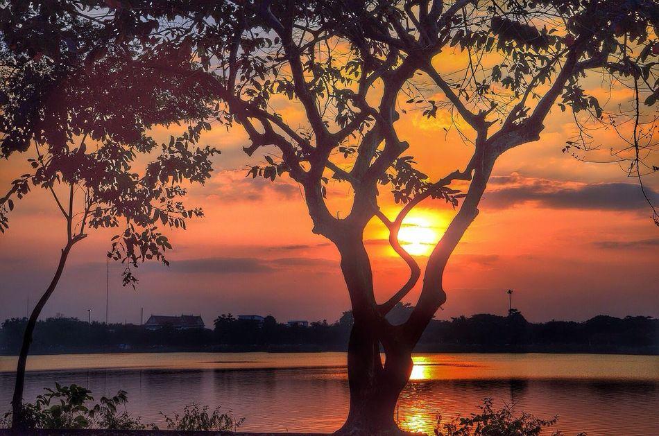 Sunset #sun #clouds #skylovers #sky #nature #beautifulinnature #naturalbeauty #photography #landscape Hello World EyeEm Best Edits Landscape_Collection
