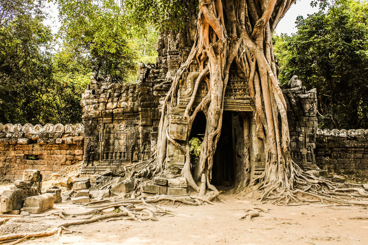 Angkor Angkor Temple ASIA Asian Culture Cambodia Khmer Khmer Angkor Siem Reap , Cambodia Siem Reap, Cambodia Siemreap
