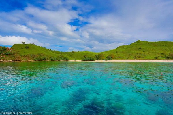 beach at Pink Beach, Flores by Rajasa Adhi