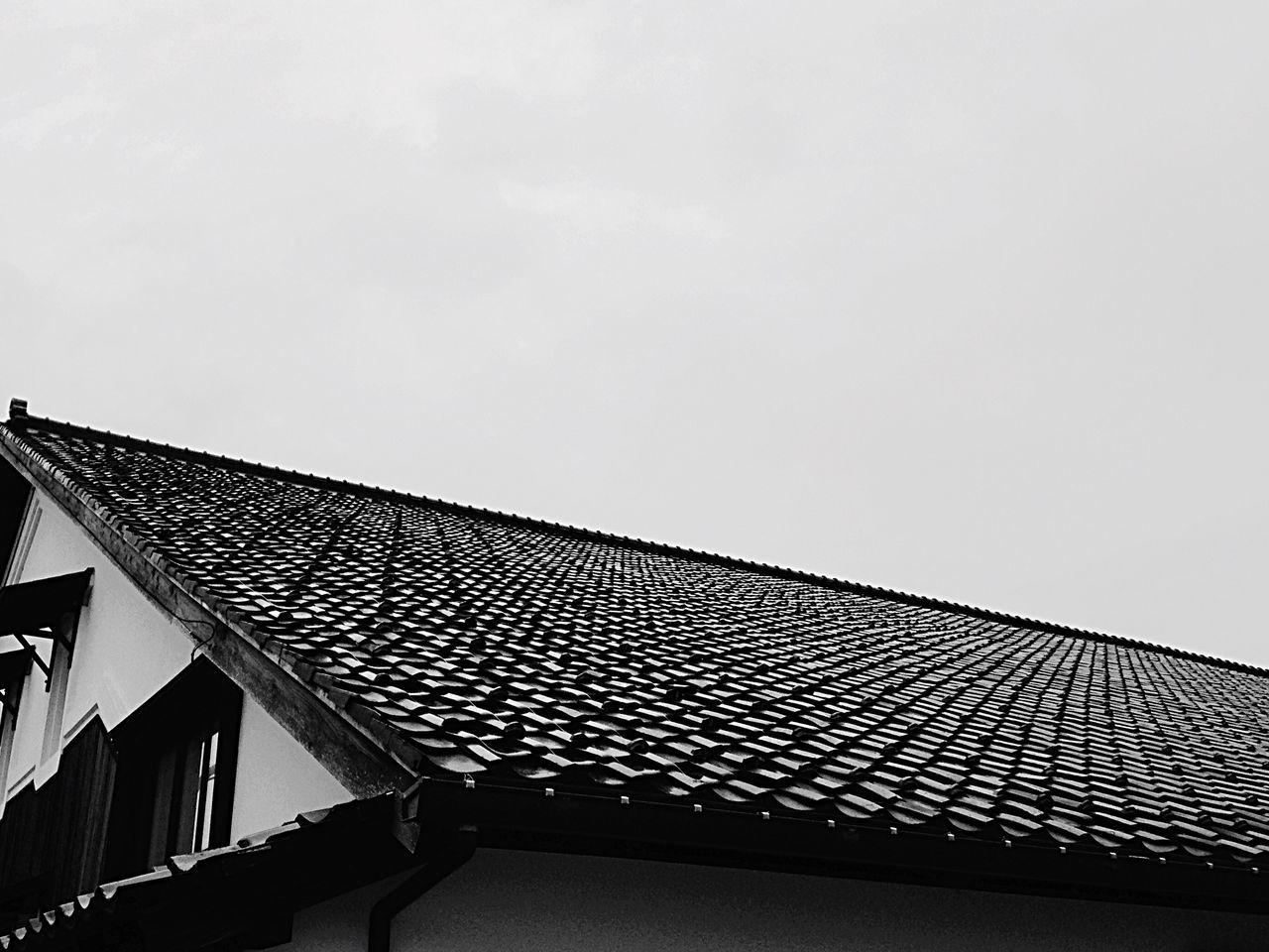 Bnw_friday_eyeemchallenge Roof Tiles