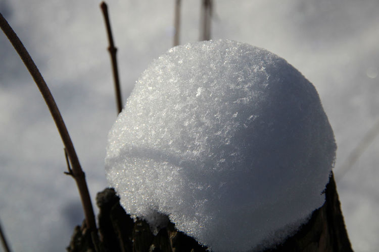 snow Cold Cold Temperature Detail Light And Shadow Snow Snowflakes Weather White & Whiteness Winter