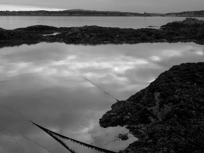 Calm evening on the coast Ocean Calm Sea ıslands Water Nature Reflection Tranquility No People Growth Outdoors Sky Landscape Day Beauty In Nature Horizontal Mooring Rope Mizen Peninsula West Cork Wildatlanticway Ireland