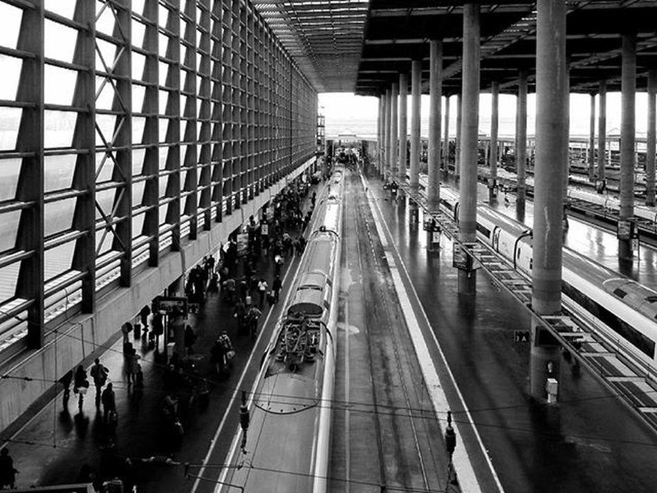 Entramado. Bnw Blackandwhite Blancoynegro Monochrome Railwaystation Madrid Train Railway Engineering Architecture Arquitecturacivil Arquitectura Altavelocidad Quick Train Q Showcase March The Architect - 2016 EyeEm Awards