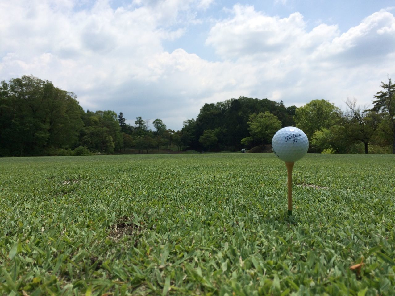 golf, grass, green color, golf ball, golf course, cloud - sky, tree, sport, ball, growth, sky, no people, green - golf course, nature, day, outdoors, tee, field, tranquility, scenics, beauty in nature, landscape