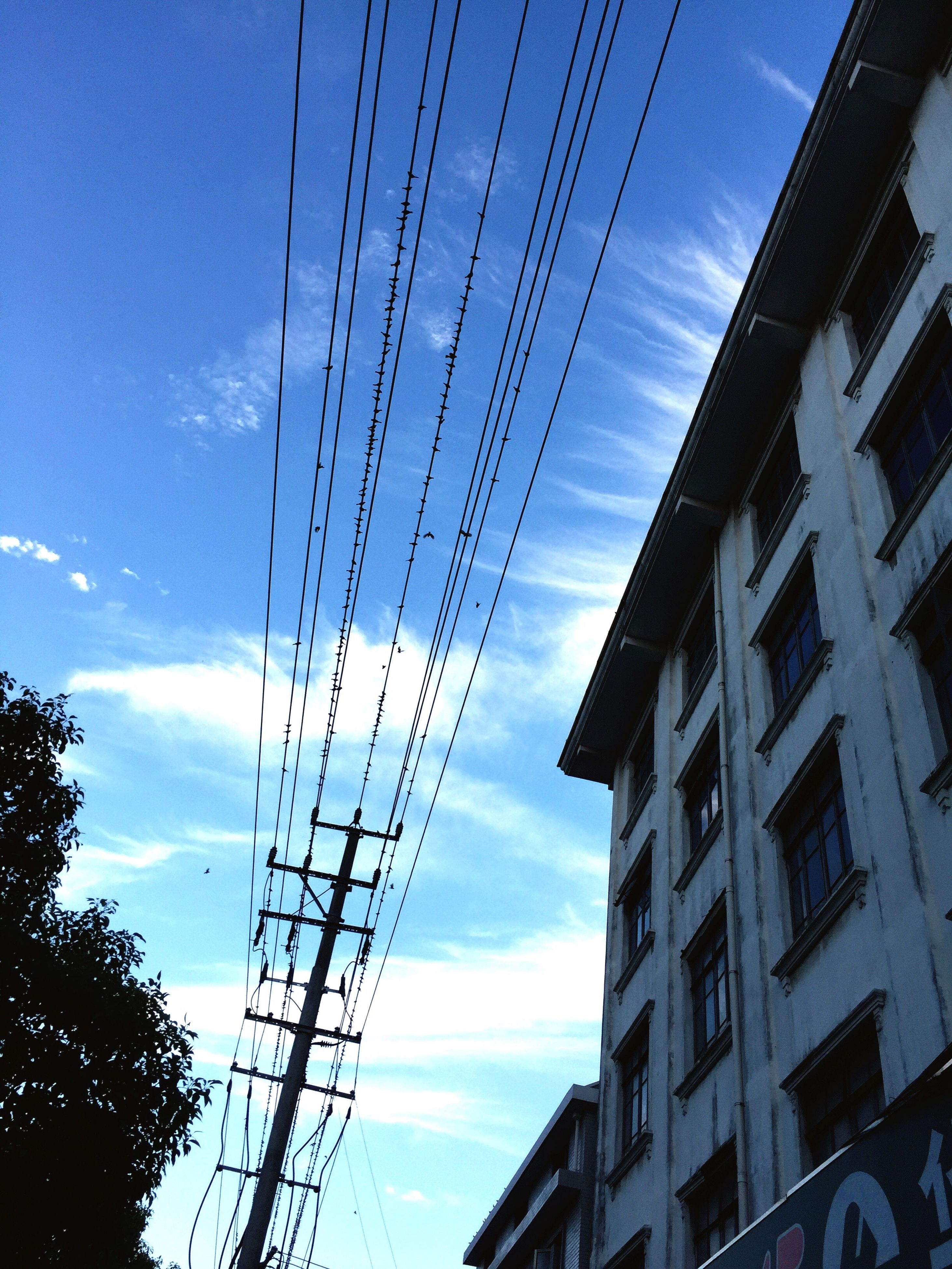 architecture, built structure, building exterior, low angle view, electricity, sky, power line, connection, cable, city, power supply, electricity pylon, tall - high, tower, cloud, blue, day, outdoors, cloud - sky, city life, office building, skyscraper, no people, modern, development