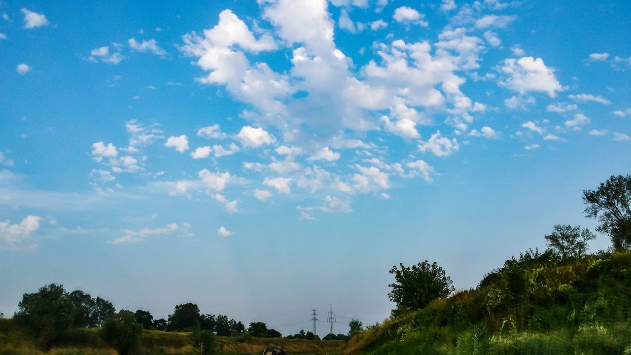 sky, nature, tree, beauty in nature, scenics, cloud - sky, tranquility, day, no people, tranquil scene, blue, outdoors, low angle view, landscape