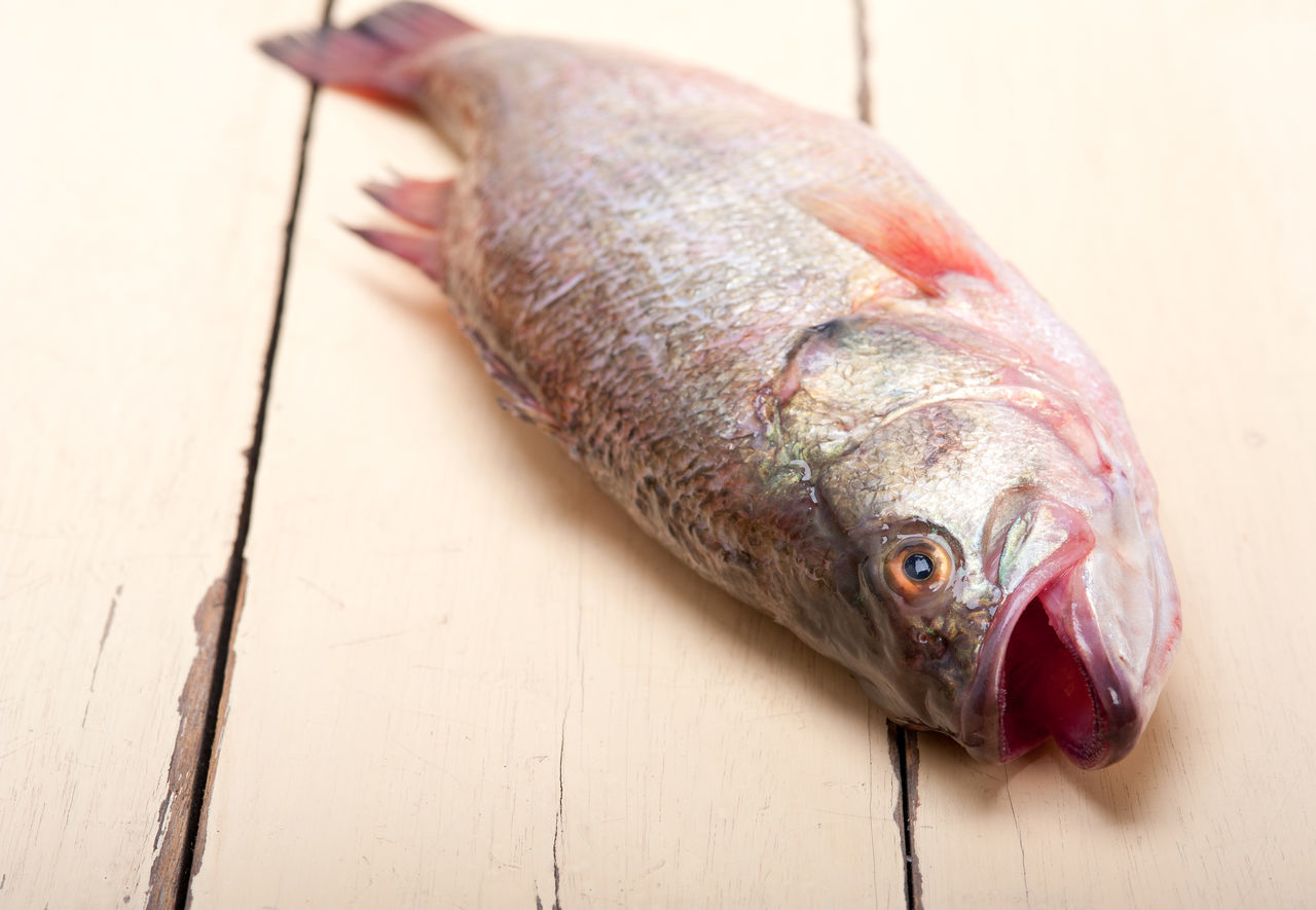 Close-Up Of Fish On Table