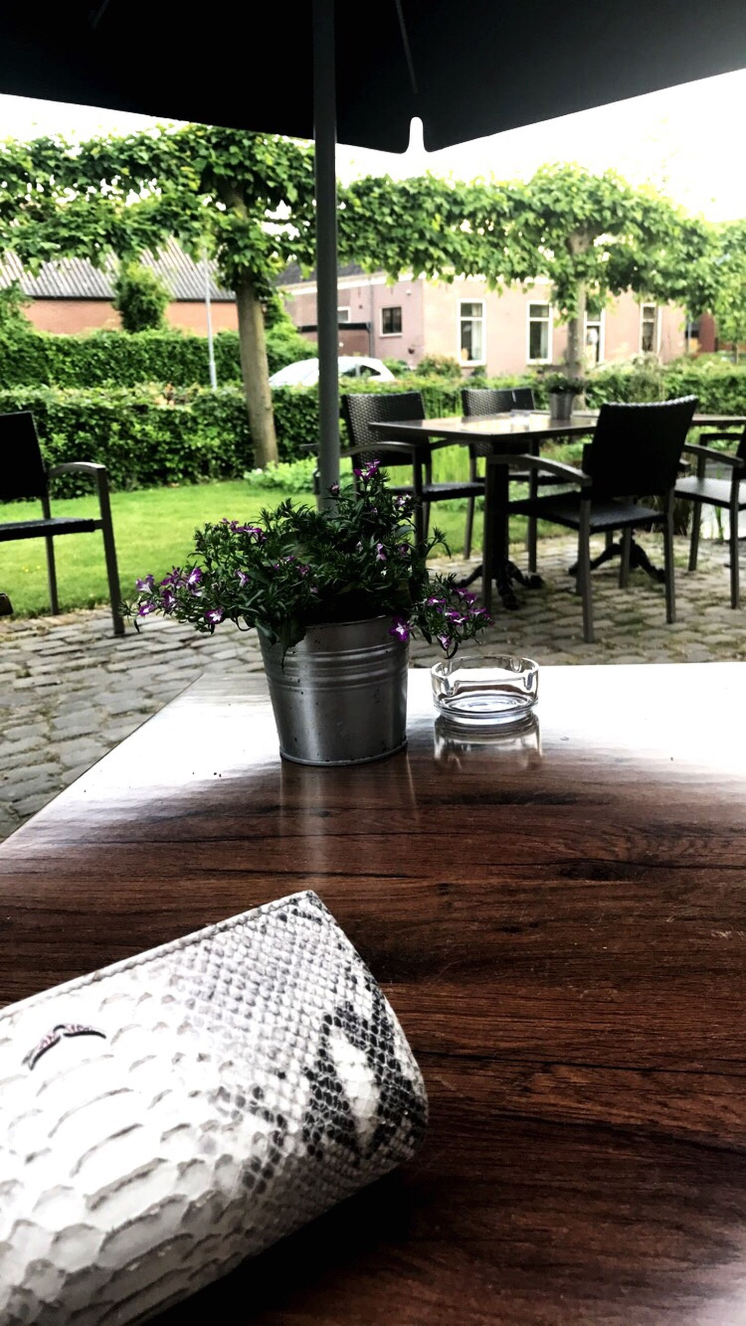 table, chair, indoors, no people, furniture, cafe, day, plant, tree, nature