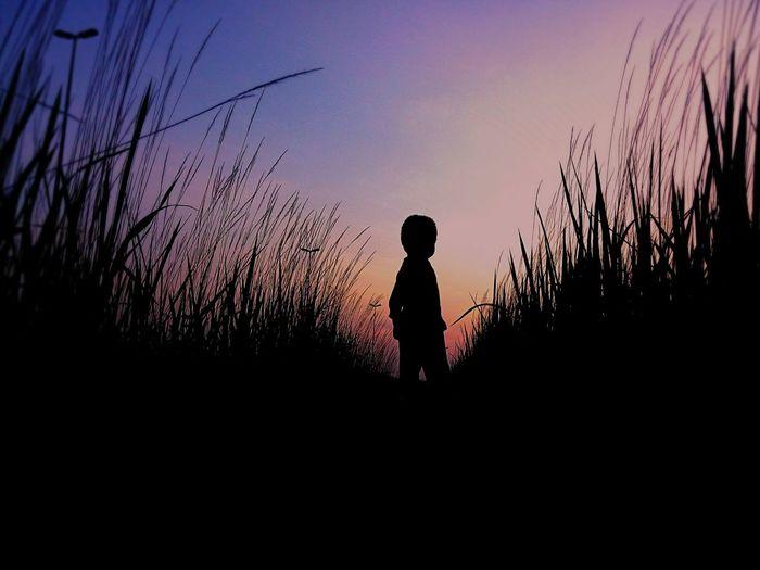 Kid portrait on vignette. Love this kind of color. BiTerabur Kidsphotography Silhouette Sunset_collection EyeEm Malaysia Phoneography Huawei Beautiful Sunset Habitude EyeEm Best Shots