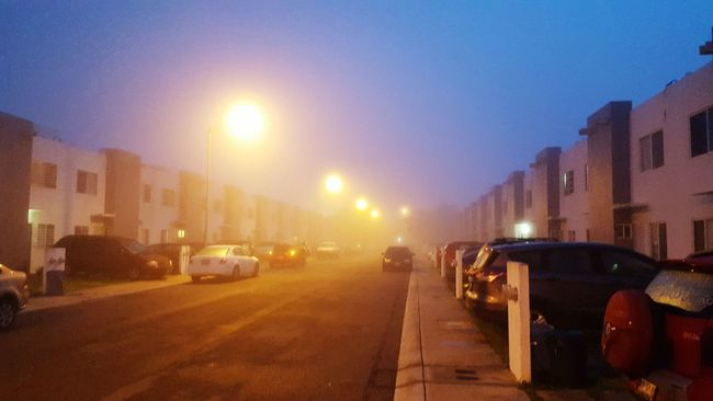 despertar tenebroso Enjoy The Moment Street Light Outdoors Neblina Amanecer