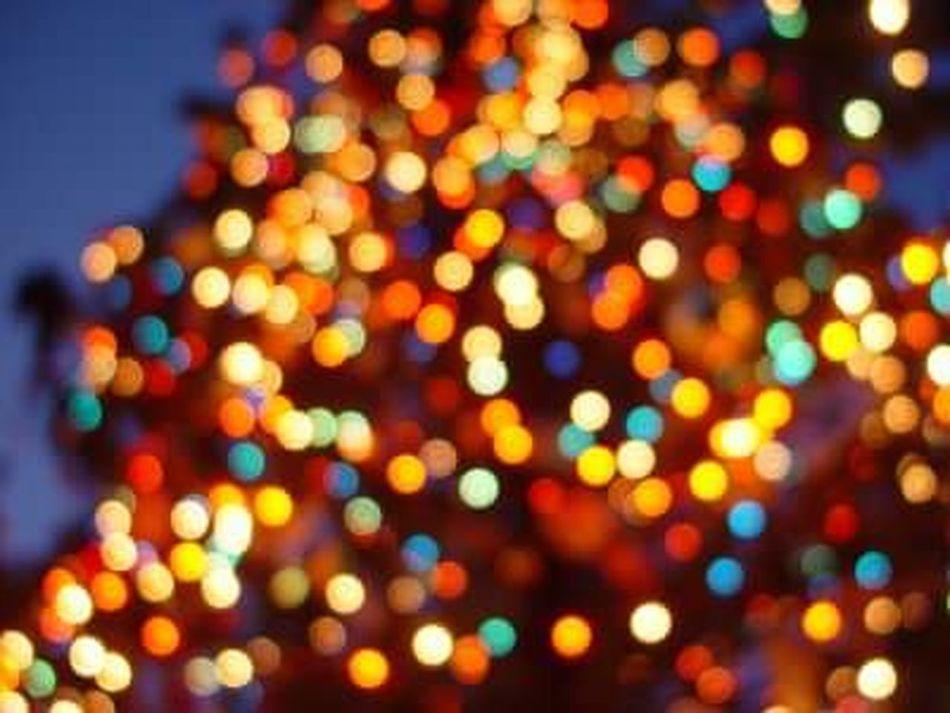 Christmas Tree Light And Shadow Christmaslight Taking Photos