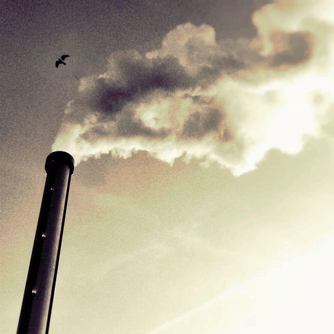 clouds factory at Le Merle Moqueur Clouds Factory