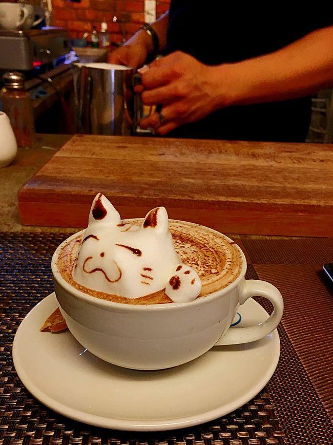 Latte Art Cappuccino Catpuccino