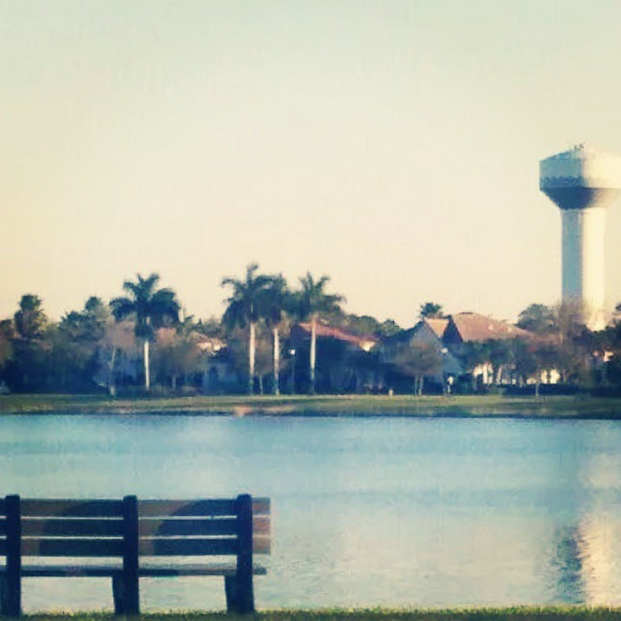 Lake Dorothy, Evergrene. Palm Beach Gardens, FL. Retro vibes. Jj_forum_1259 Rsa_water_calm Rsa_water Jj_forum_1291 jj_forum_1313 jj_forum_1328 gramoftheday gotd_939 gotd_940 gotd_943 gotd_959