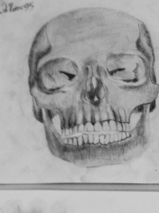 Skull Draw My Drawing Happy Relaxing Hello that's my work check it out :) !