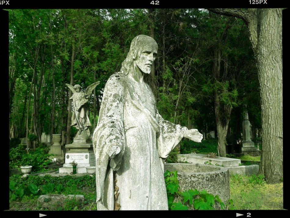 Beauty Of Decay Graveyard Beauty TombstoneErotic Dirtyangel