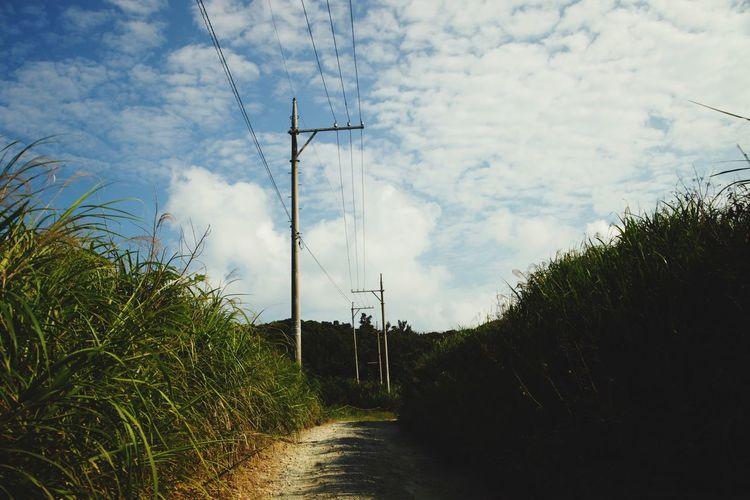 あぜ道 畑 道 沖縄 Field Footpath As Landscape Footpath 青空 空 Sky