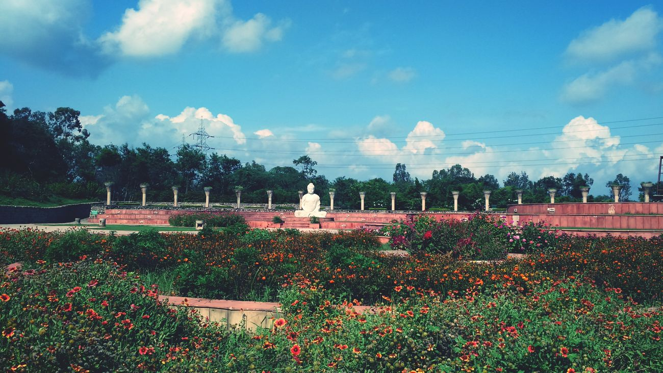 The Garden Of Silance Buddha Natural Beauty Chandigarh Incredible India Clouds And Sky Flowers Sclupture Love My City Love India