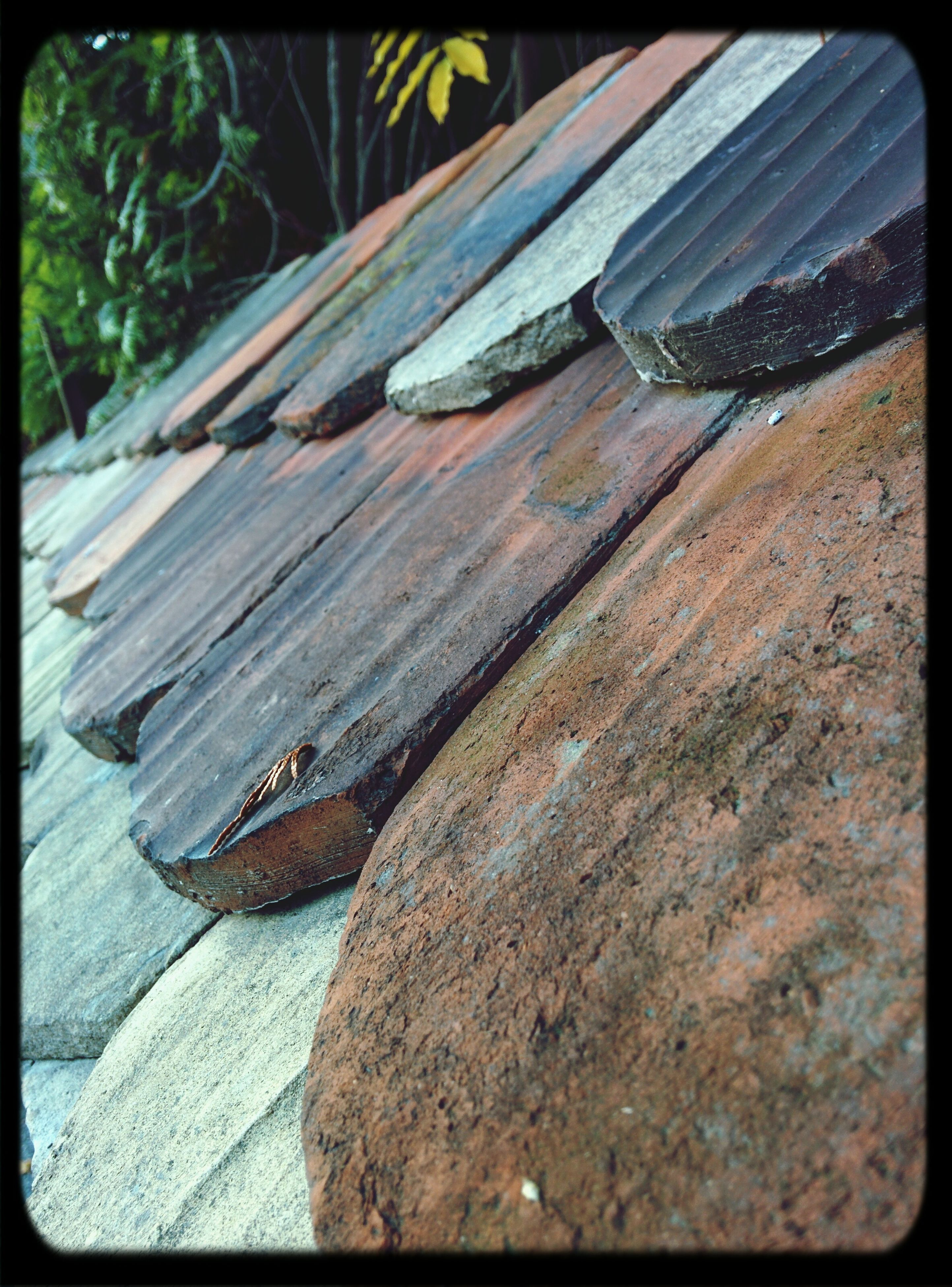transfer print, auto post production filter, wood - material, close-up, day, wood, outdoors, high angle view, no people, sunlight, abandoned, nature, selective focus, wooden, old, focus on foreground, damaged, frame, plank, textured