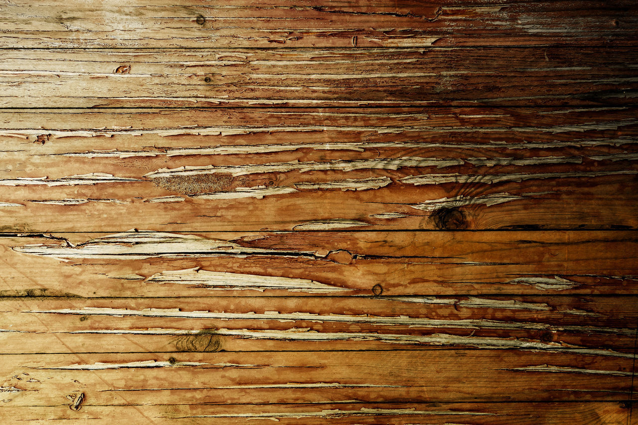 Abstract Backgrounds Brown Close-up Copy Space Day Full Frame Hardwood Hardwood Floor Knotted Wood Macro Nature No People Pattern Rough Rustic Textured  Textured Effect Timber Vintage Wood Wood - Material Wood Grain Wood Paneling