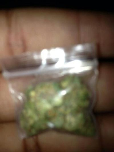 Roll Up Where The Loud At!!