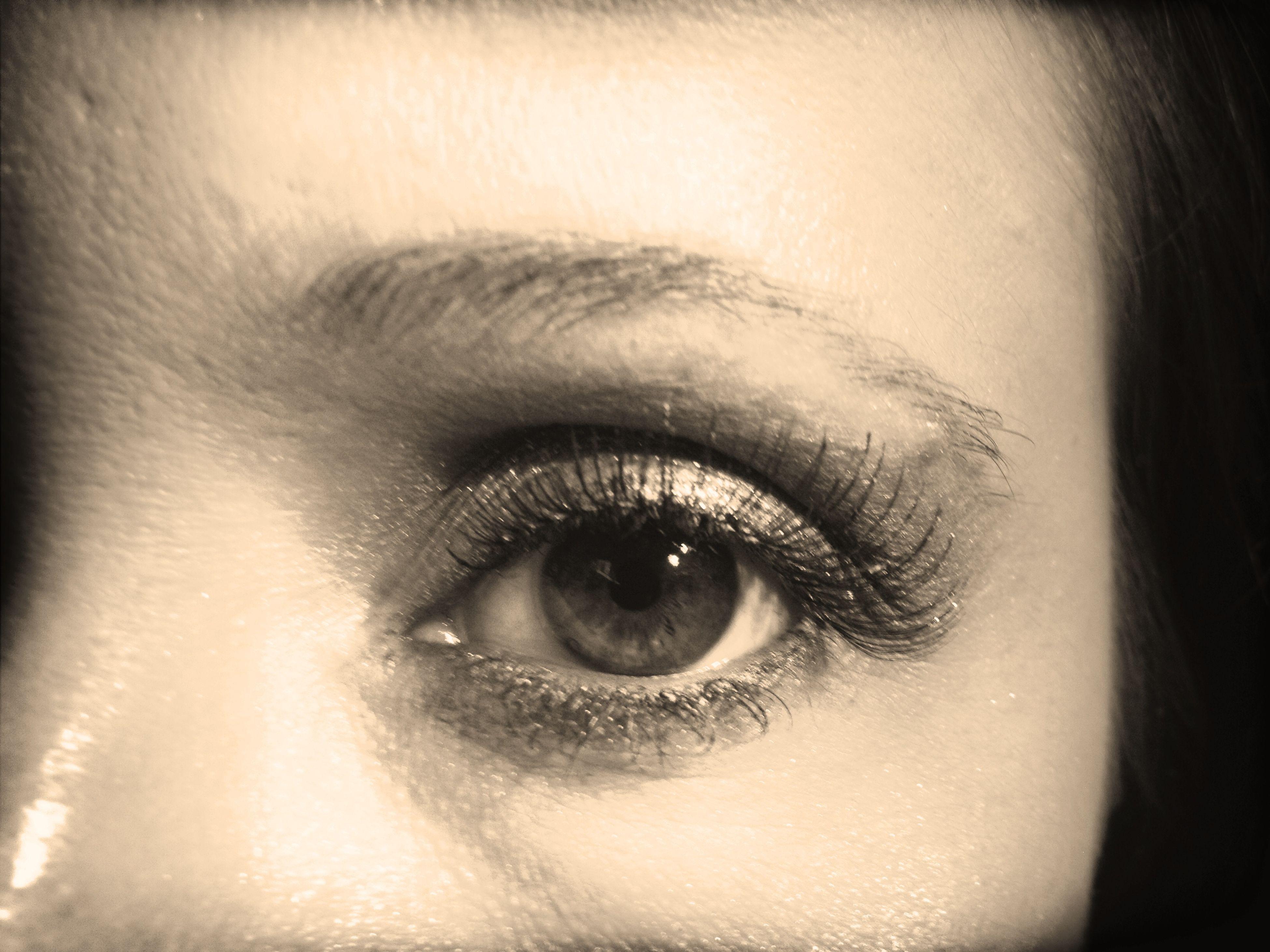human eye, close-up, eyelash, looking at camera, portrait, human face, headshot, eyesight, part of, lifestyles, sensory perception, indoors, human skin, eyebrow, extreme close-up, person, extreme close up