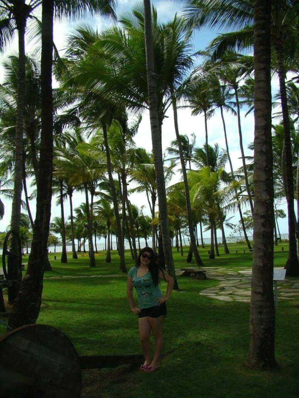 Brasil Recife, BRASIL Natureza 🐦🌳 Paradise Beach At Hotel Vila Galé Cabodesantoagostinho PernambucanaDeCoração Pernambuco-Brasil💕💕