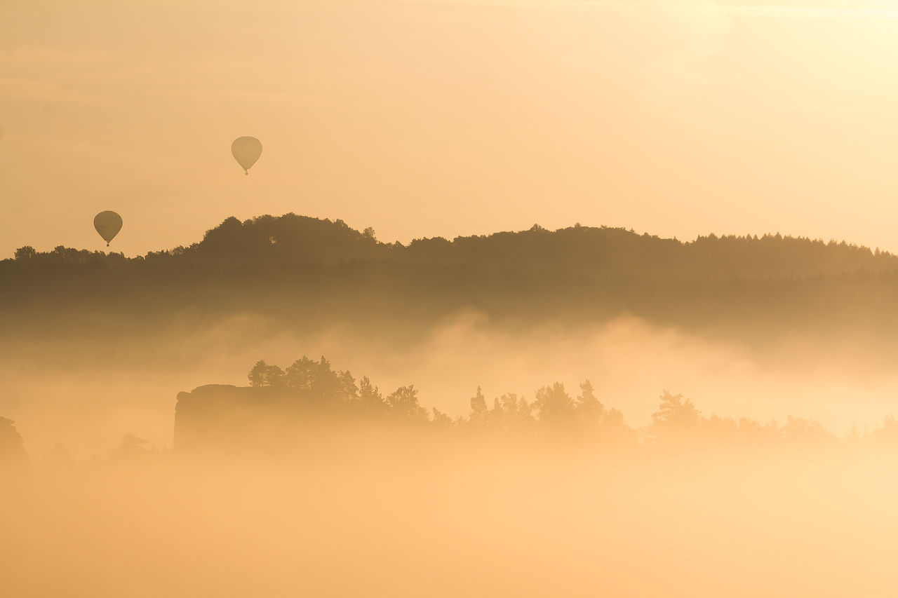 Here are the last shots of my trip to the Bastei Bridge in Saxon Swizerland, those of my trip to the Castle Hohenzollern will follow ;) | Backlight Bastei Bright Fog Hot-air Balloon Landscape Morning Nature Saxon Switzerland Silhouette Sun